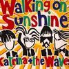 Katrina & The Waves - Walking On Sunshine