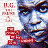 BG The Prince Of Rap - The Colour Of My Dreams